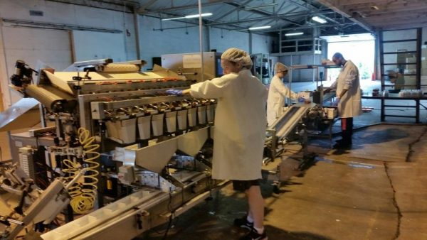 Clam Shell Packing Line