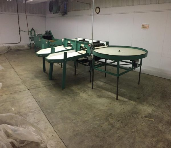 Tew Washing & Sorting Line with Round Table