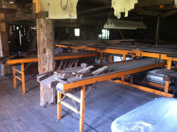 Trescott Apple Conveyor