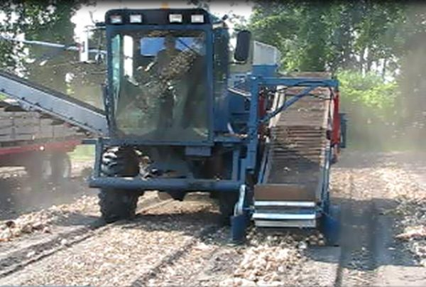 1 row Top Air Cutter Onion Harvester