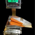 Produce Scales with Tippable Hopper